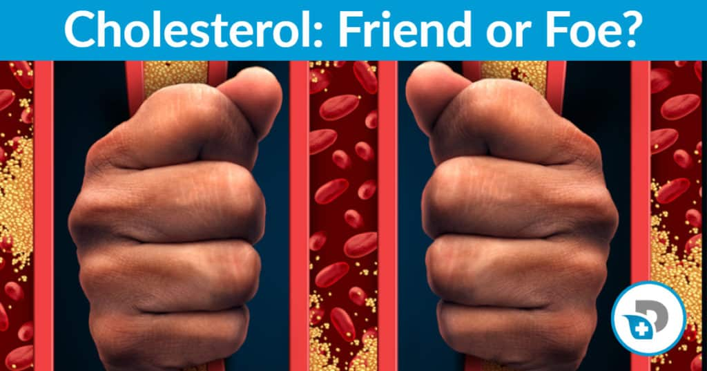 cholesterol friend or foe