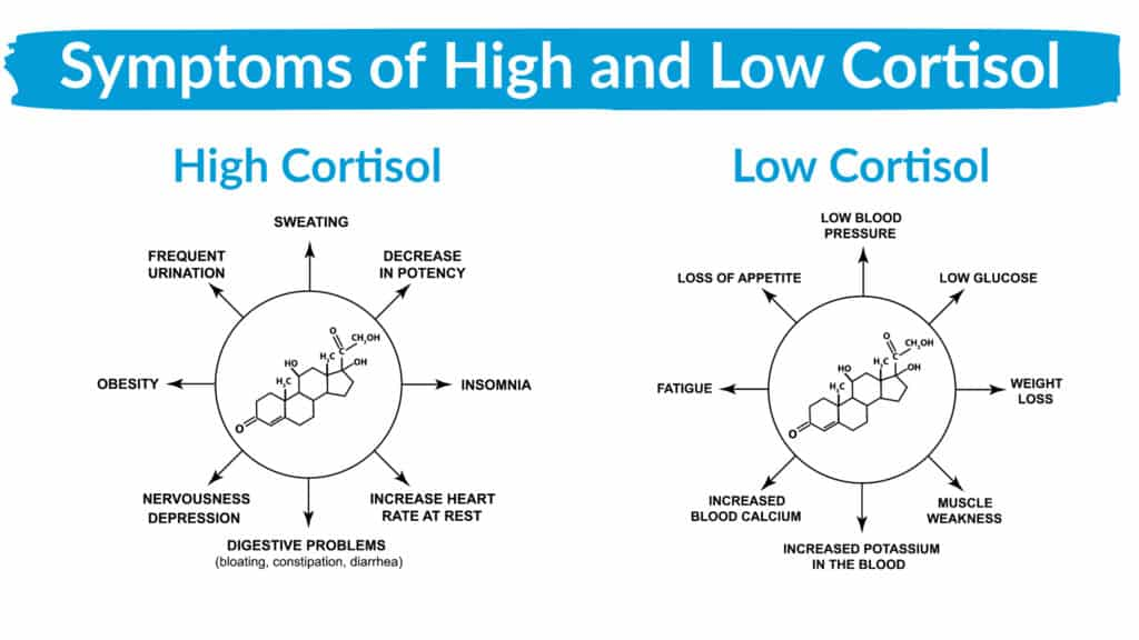 Symptoms of High and Low Cortisol